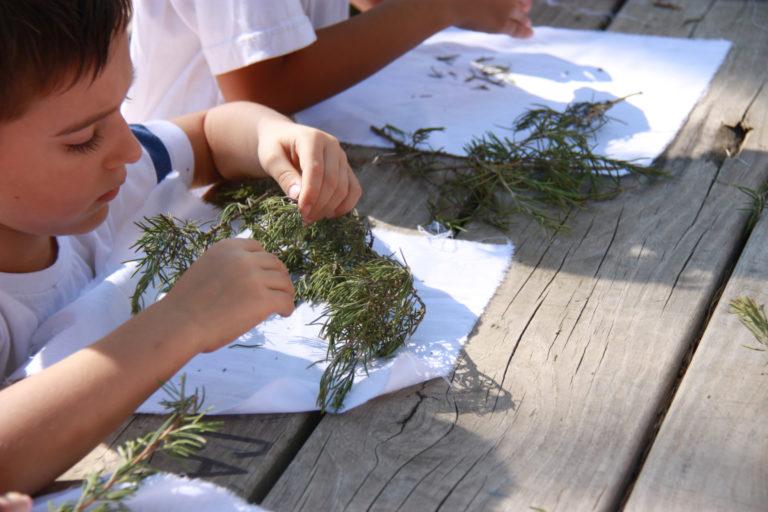 Descobrim agricultura muntanya_7